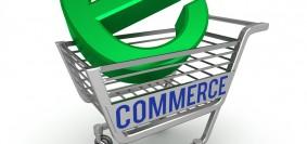 image-ecommerce-2013