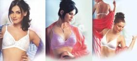 white bra, purple bra daisy dee lingerie
