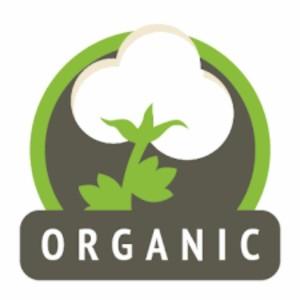 Organic Underwear artical - 3